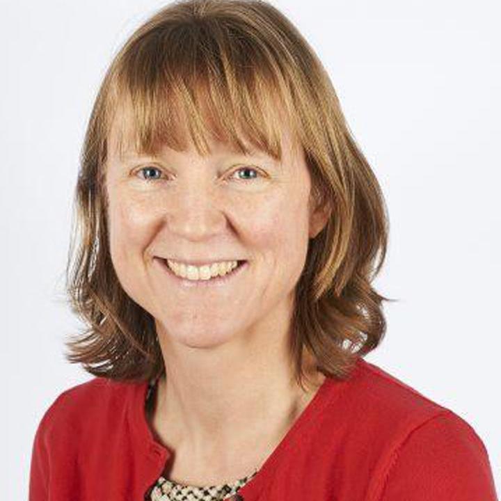 Joanna Whitehouse, Consultant